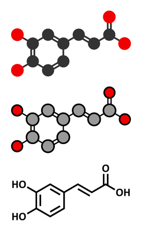 Caffeic acid molecule. Intermediate in the biosynthesis of lignin. Conventional skeletal formula and stylized representations. 向量圖像
