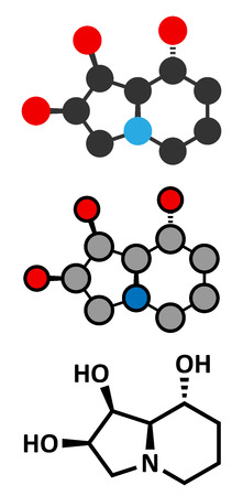 Swainsonine locoweed toxin molecule. Present in Astragalus, Oxytropis and Swainsona plant species. Conventional skeletal formula and stylized representations.