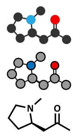 Hygrine coca alkaloid molecule. Conventional skeletal formula and stylized representations.