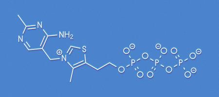 Thiamine triphosphate molecule. Skeletal formula.