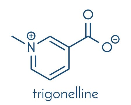 Molécula Trigonellina Metabolito De La Niacina Vitamina B3