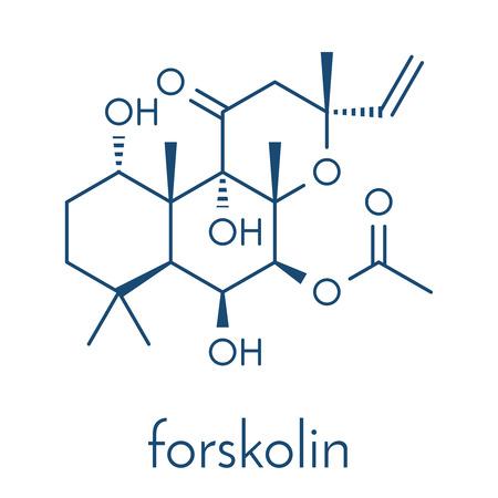 フォルスコリン (coleonol) 分子。キャンプの増加レベルの結果、酵素アデニル酸シクラーゼをアクティブにします。骨格式。  イラスト・ベクター素材