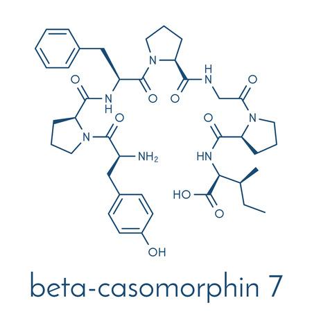 Β-カゾモルフィン ペプチド 7 分子。人間の病気の役割を担うかもしれないカゼインの分解産物。骨格式。