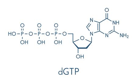 Deoxyguanosine triphosphate nucleotide molecule.