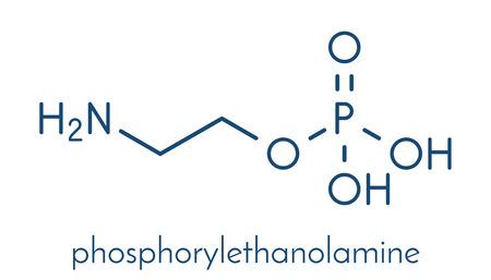 Phosphorylethanolamine (phosphoethanolamine) investigational cancer drug molecule. Skeletal formula.