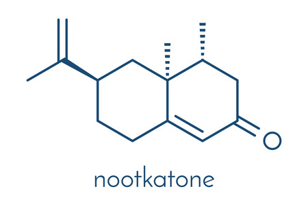 Nootkatone natural insect repellent molecule. Present in grapefruit. Skeletal formula.