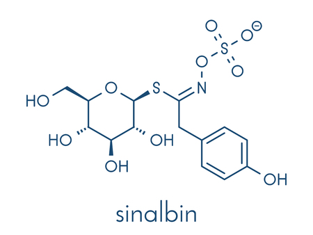 Sinalbin glucosinolate molecule. Present in seeds of white mustard (Sinapis alba). Skeletal formula.