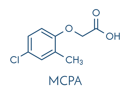 MCPA (2-methyl-4-chlorophenoxyacetic acid) herbicide molecule. Skeletal formula. Illustration