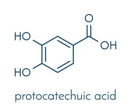 atomic: Protocatechuic acid (PCA) green tea antioxidant molecule. Skeletal formula.