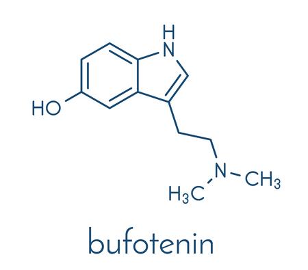 Bufotenin molecule. Tryptamine present in several psychedelic toads. Skeletal formula.