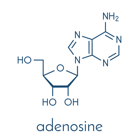 Adenosine (Ado) purine nucleoside molecule. Important component of ATP, ADP, cAMP and RNA. Also used as drug. Skeletal formula. Illustration