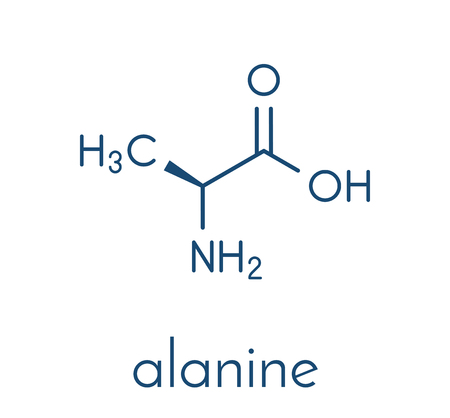 Alanine (L-alanine, Ala, A) amino acid molecule. Skeletal formula.