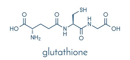Glutathion (glutathion réduit, GSH) molécule antioxydante endogène. Formule squelettique.