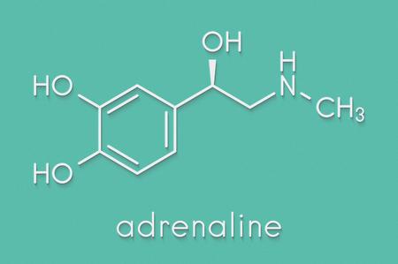 아드레날린 (아드레날린, 에피네프린) 신경 전달 물질 분자. 아나필락시 치료의 약물로 사용된다. 스톡 콘텐츠