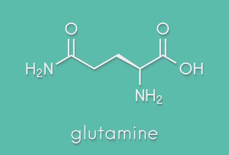 Glutamine (l-glutamine, Gin, Q) aminozuurmolecuul. Skeletachtige formule. Stockfoto
