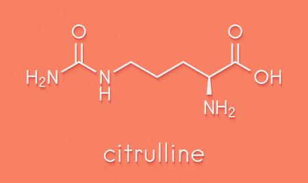 シトルリン アミノ酸分子。いくつかのスポーツ栄養補助食品に存在します。骨格式。