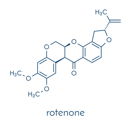 Rotenone broad-spectrum insecticide molecule. Also linked to development of Parkinson�s disease. Skeletal formula.