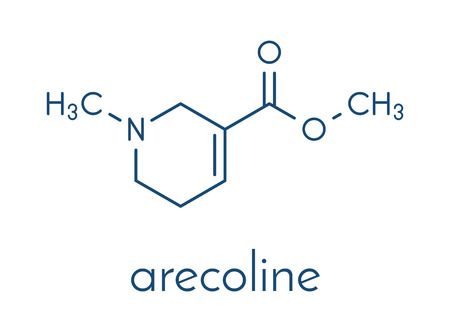 Arecoline areca nut stimulant compound, chemical structure. Skeletal formula. Stock Vector - 87062720