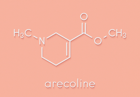 Arecoline areca nut stimulant compound, chemical structure. Skeletal formula.