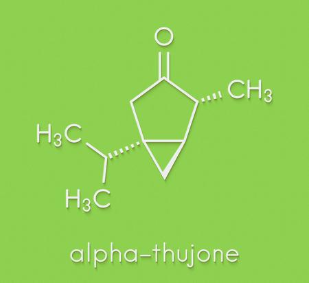 ajenjo: Thujone absinthe molecule, estructura química. Fórmula esquelética. Foto de archivo
