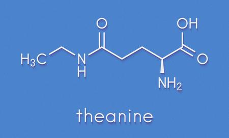 Molécula de ervas de teanina. Constituinte de chá preparado a partir de Camellia sinensis. Também tomado como suplemento nutricional. Fórmula esquelética.