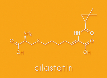 Cilastatin molecule. Dehydropeptidase inhibitor that blocks breakdown of the antibiotic imipenem. Skeletal formula. Stock Photo