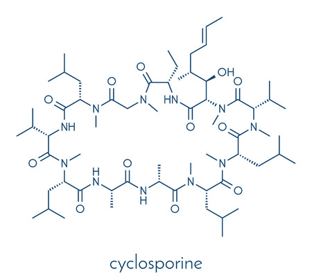 Ciclosporin (cyclosporine) immunosuppressant drug molecule. Used to prevent rejection of transplanted organs and for a number of other uses. Skeletal formula.