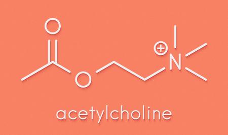 Acetylchloline (ACh) neurotransmitter molecule. Skeletal formula.