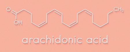 Molécule d'acide arachidonique. Acide gras oméga-6 polyinsaturé qui est un précurseur des prostaglandines, de la prostacycline, des thromboxanes, des leucotriènes et de l'anandamide. Formule squelettique. Banque d'images - 91890992