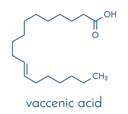 Vaccenic acid molecule. Trans fatty acid, present in animal fat and milk. Skeletal formula vector illustration. Imagens - 91934015