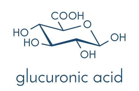 Glucuronic acid molecule. Glucuronidation of xenobiotics plays role in drug metabolism, giving glucuronides. Skeletal formula.