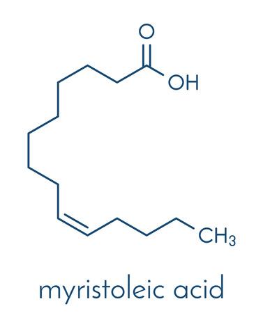 Myristoleic acid (omega-5) fatty acid molecule. Skeletal formula. Illustration