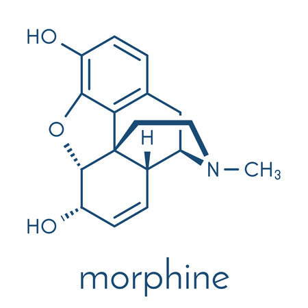 Morphine pain drug molecule. Highly addictive. Isolated from opium poppy (papaver somniferum). Skeletal formula.