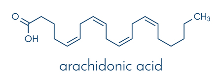 Arachidonic acid molecule. Polyunsaturated omega-6 fatty acid that is a precursor of prostaglandins, prostacyclin, thromboxanes, leukotrienes and anandamide. Skeletal formula.