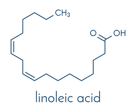 Cząsteczka kwasu linolowego (LA). Wielonienasycony kwas tłuszczowy Omega-6. Formuła szkieletowa. Ilustracje wektorowe