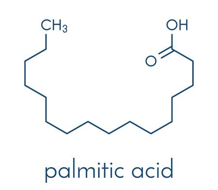 Palmitic (hexadecanoic) acid saturated fatty acid molecule. Skeletal formula. Illusztráció