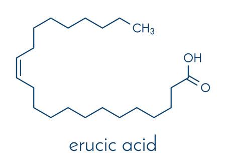 Erucic acid 분자. 일부 식물에서 발견되는 단일 불포화 오메가 -9 지방산. 골격 공식.
