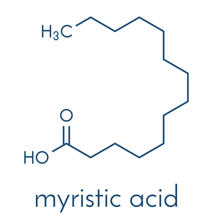 Myristic (tetradecanoic) acid saturated fatty acid molecule. Skeletal formula.