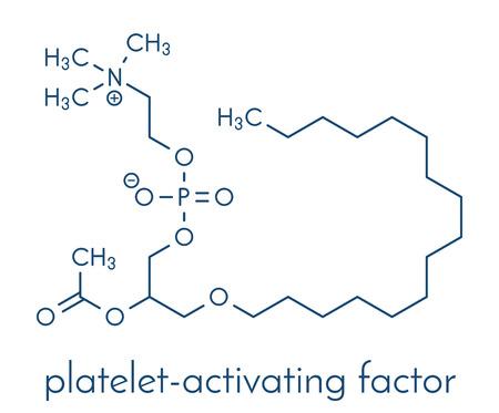 혈소판 활성화 인자 분자. 혈전증, 염증 등의 역할을합니다.
