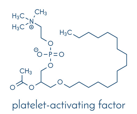 Platelet-activating factor molecule. Plays role in thrombosis, inflammation, etc Skeletal formula. 向量圖像