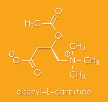 Acetylcarnitine (ALCAR) nutritional supplement molecule. Skeletal formula.