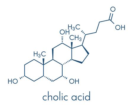Cholic acid (cholate) molecule. Main bile acid component. Skeletal formula. Stock Photo