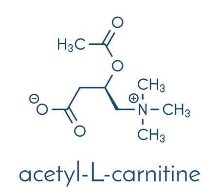 Acetylcarnitine (ALCAR) 영양 보충 분자. 골격 공식. 스톡 콘텐츠