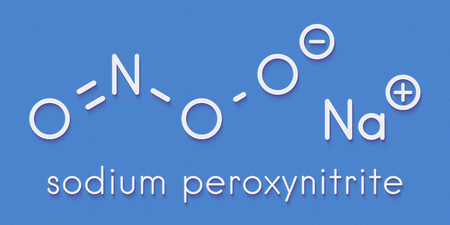 Peroxynitrite (sodium) reactive nitrogen species molecule. Formed by the reaction of the free radicals nitric oxide and superoxide in the human body. Skeletal formula. Stock Photo