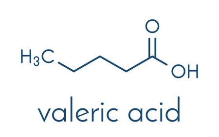 Valeric acid molecule. Smelly molecule, present in the plant valerian (Valeriana officinalis). Skeletal formula.