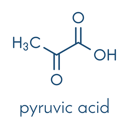 Pyruvic acid (pyruvate) molecule. Important intermediate in a number of biochemical processes. Skeletal formula.
