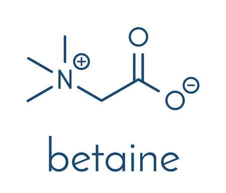 Betaine (glycine betaine, trimethylglycine) molecule. Originally found in sugar beet (Beta vulgaris). Skeletal formula. Ilustração