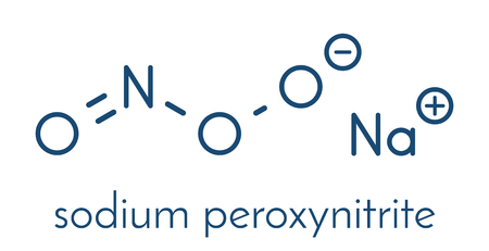 Peroxynitrite (sodium) reactive nitrogen species molecule. Formed by the reaction of the free radicals nitric oxide and superoxide in the human body. Skeletal formula. Illustration
