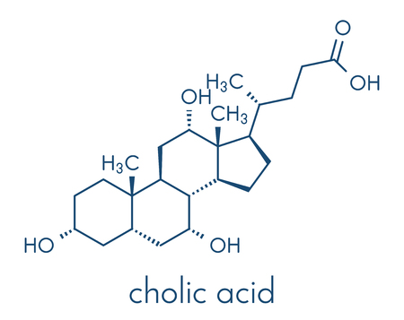 Cholic acid (cholate) molecule. Main bile acid component. Skeletal formula. Illustration