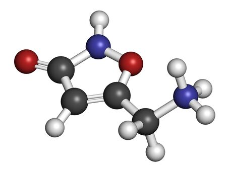 Muscimol (agarin, pantherine) molecule. Main psychoactive component of fly agaric (Amanita muscaria). 3D rendering. Atoms are represented as spheres with conventional color coding: hydrogen (white), carbon (grey), oxygen (red), nitrogen (blue). Banque d'images